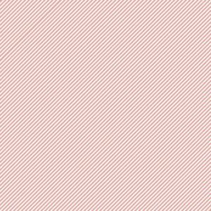 Liebe Papier - Papeleiro - Stripes - Listrado Chiclete